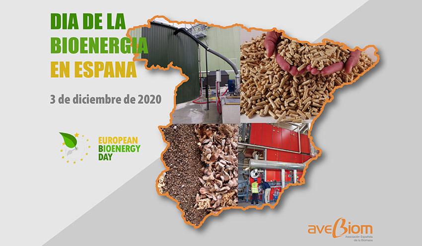 Día de la Bioenergía en España: casi un mes de autosuficiencia energética gracias a la biomasa
