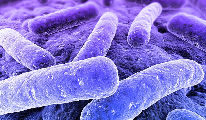 Nuevo webinar LABAQUA: Norma UNE 100030:2017 de prevención y control de la Legionella