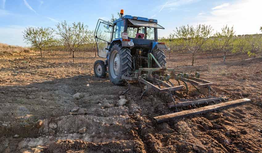 De cómo conseguir unir agricultura y cuidado del medio ambiente