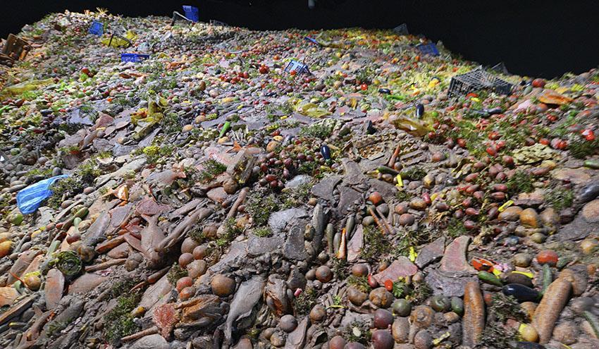 Cómo rediseñar el sistema alimentario para evitar el desperdicio
