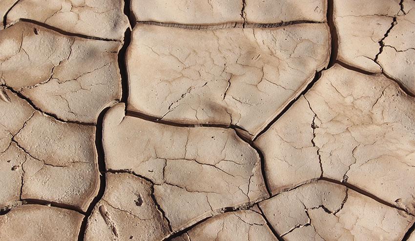 El impacto del COVID-19 será temporal, el del cambio climático será masivo