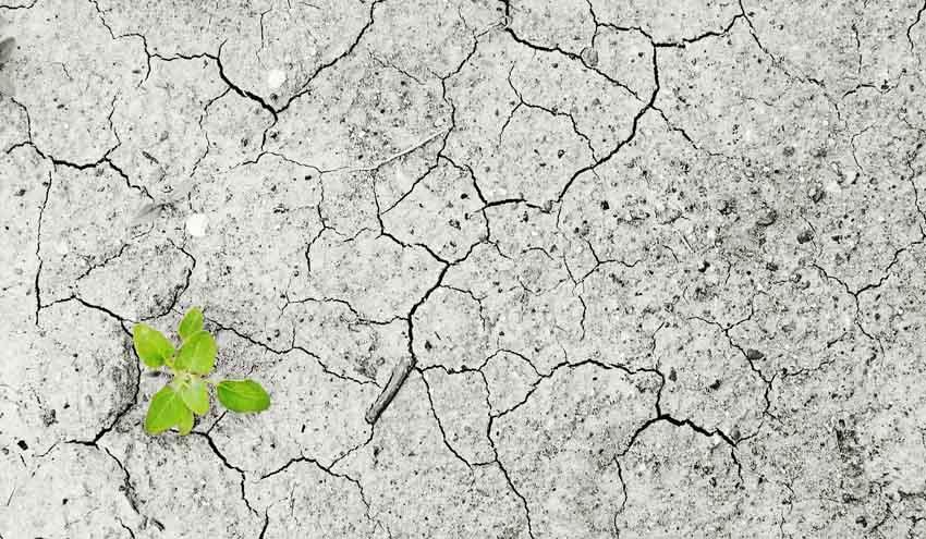 Registrar la huella hídrica de Europa para determinar posibles vulnerabilidades económicas