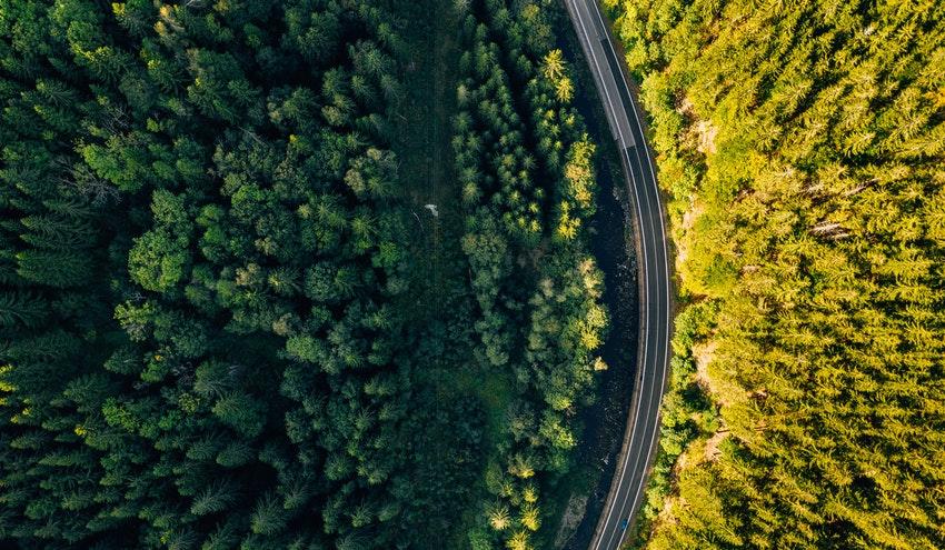 Biomasa, clave en la transición energética y el desarrollo económico y rural de España