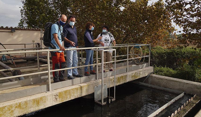 La Agencia Balear del Agua y WWF potencian la acogida de biodiversidad en las depuradoras