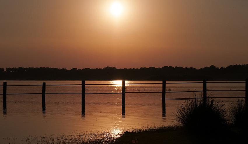 Luz verde al convenio para adecuar el tratamiento de las aguas residuales de Sevilla en el entorno de Doñana
