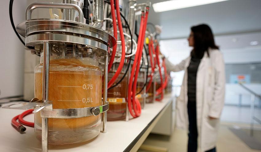 AINIA desarrolla biofactorías de microorganismos para la producción sostenible de sustancias para la industria