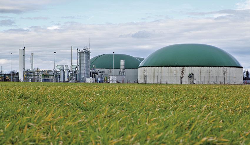 Tierra a la vista para el biogás, pero aún no la pisamos