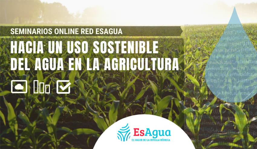 Hacia el uso sostenible del agua en la agricultura: nuevo seminario online de la red EsAgua