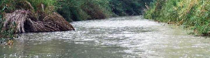 Luz verde al proyecto de desarrollo de un sistema de contabilidad del río Segura y sus transferencias