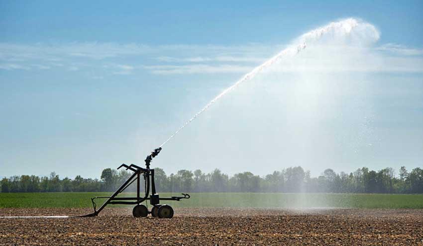 El IIAMA trabaja para mejorar el nexo agua-agricultura-energía-medioambiente