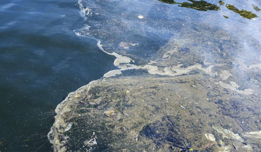 Así seguimos la pista a los contaminantes emergentes