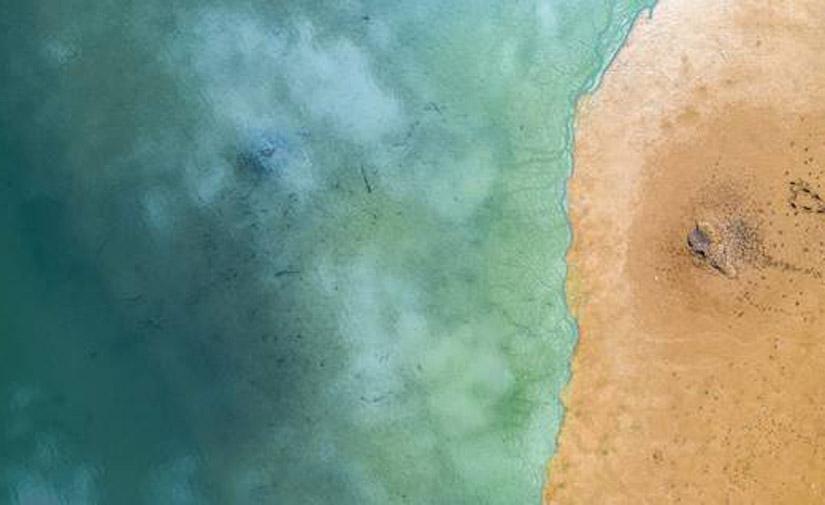 Bacterias para reducir el mercurio acumulado en los sedimentos marinos