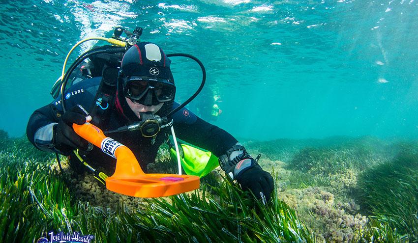 La 3ª edición del Concurso Mares Circulares reconoce 4 proyectos por sus soluciones contra la basura marina