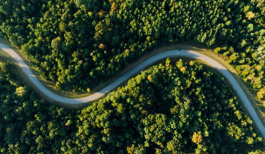 Un informe de Naciones Unidas advierte: no estamos en el camino de una recuperación verde