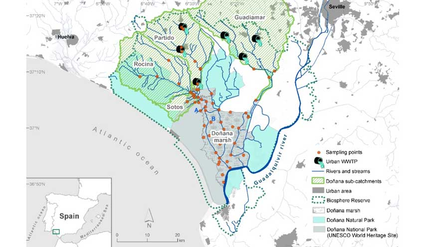 La calidad del agua en Doñana, en peligro