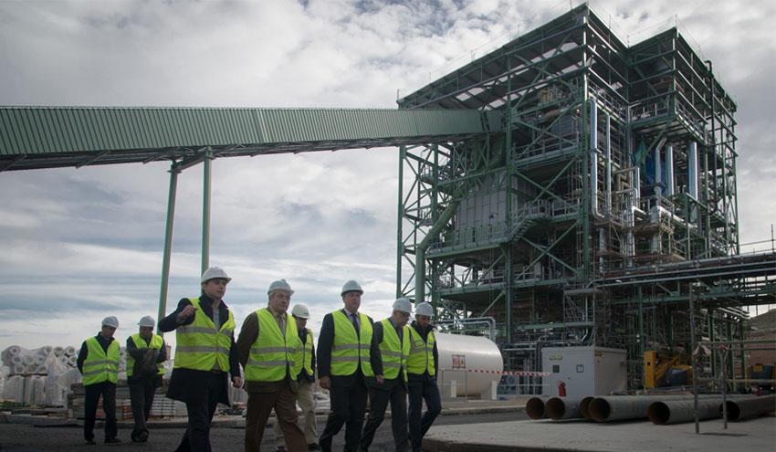 Ence se adjudica una planta de generación de energía con biomasa de 40 MW