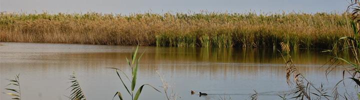 A información pública el proyecto del Plan de gestión del riesgo de inundación del distrito de cuenca fluvial de Cataluña