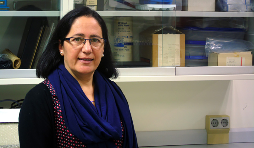 Inmaculada Romero, nueva directora de la Cátedra 'Planeta y Desarrollo Sostenible'