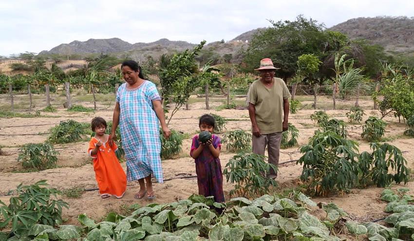 Desalación de agua de mar, solución para la Guajira