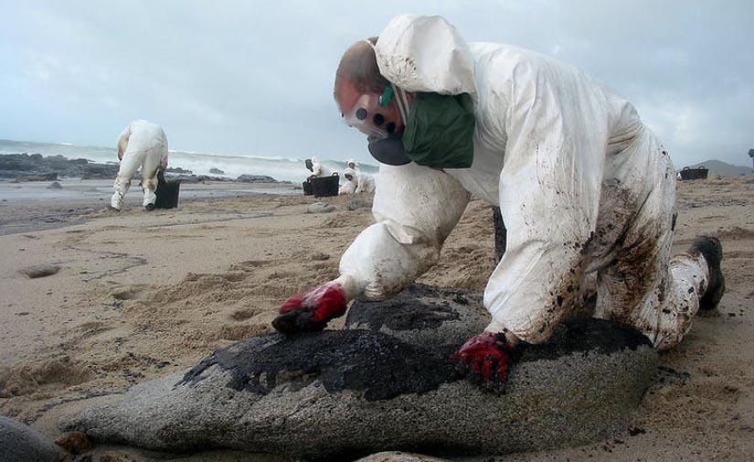 Ecocidio: justicia para las víctimas del crimen ambiental