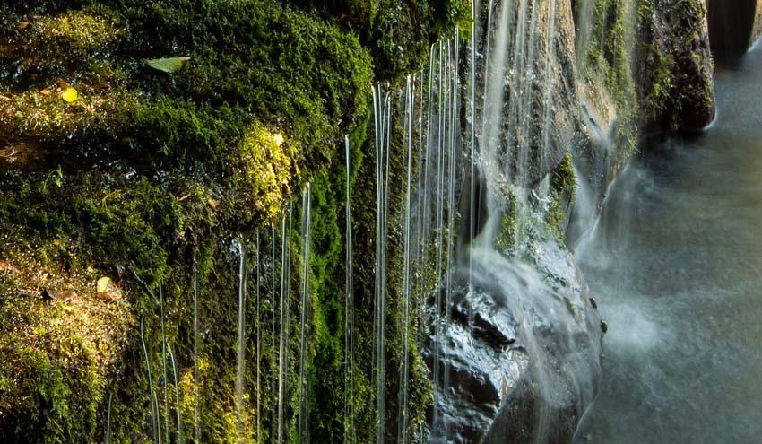 Contaminación de aguas subterráneas por nitratos y exigibilidad por los afectados de medidas efectivas de control