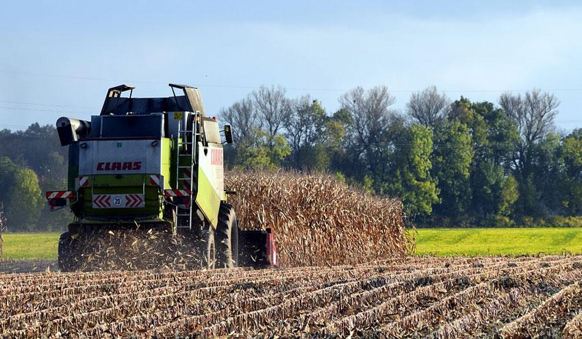 Nuevos pasos para un mayor uso de la biomasa en Europa