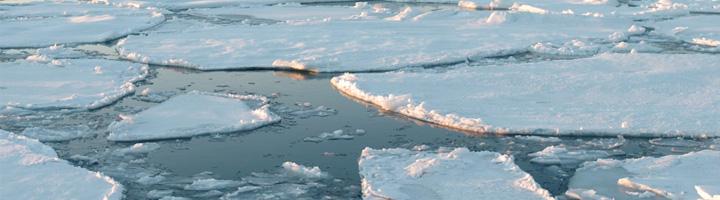 Investigadores del CSIC logran probar que la radiación UV aumenta la capacidad de captura de CO2 en el Ártico