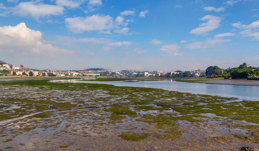 Arranca la contratación de las obras de dragado ambiental de la ría de O Burgo