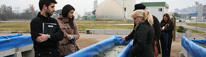El Urban River Lab permite estudiar el efecto de distintas especies de plantas acuáticas para la depuración de aguas