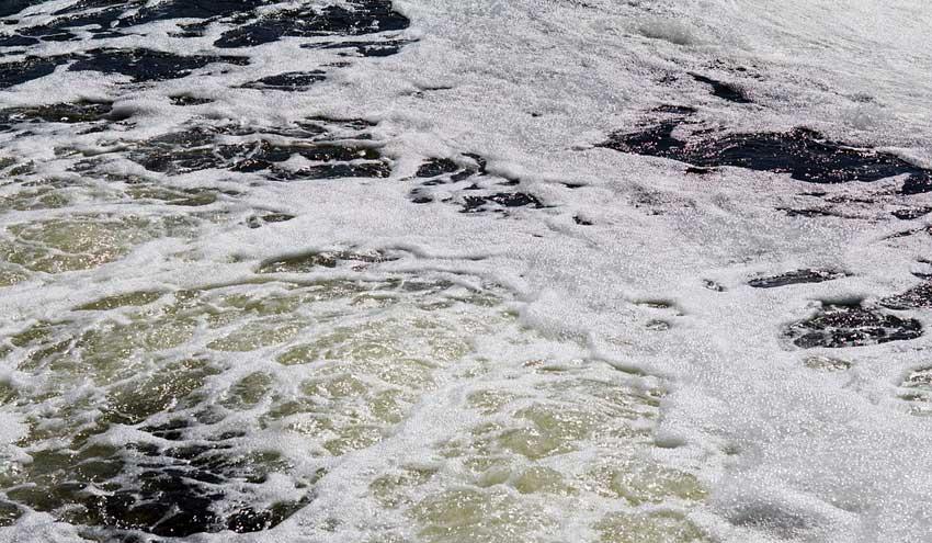 Reducir los vertidos, mejorar la calidad del agua y valorizar los residuos de la industria conservera