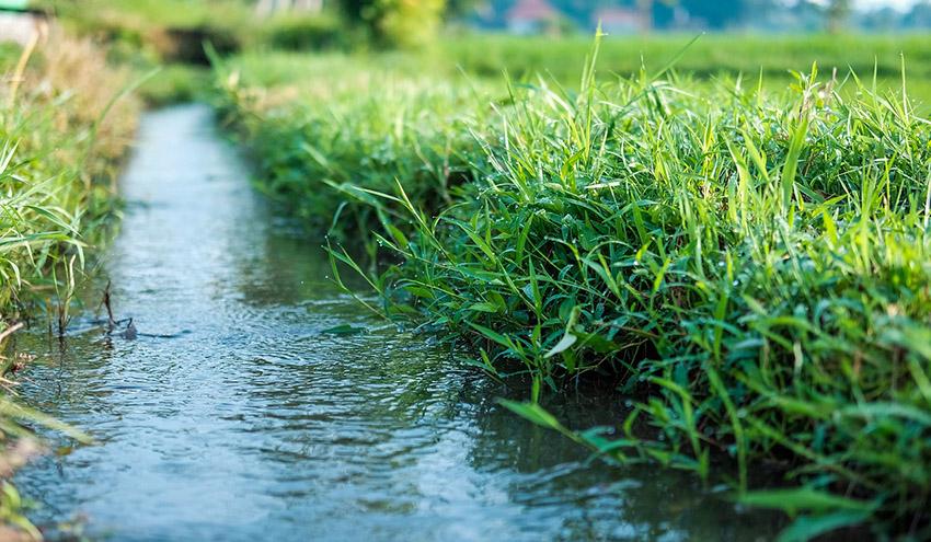 AQUACYCLE: tecnologías ecoinnovadoras para el tratamiento y reutilización eficaz de aguas residuales
