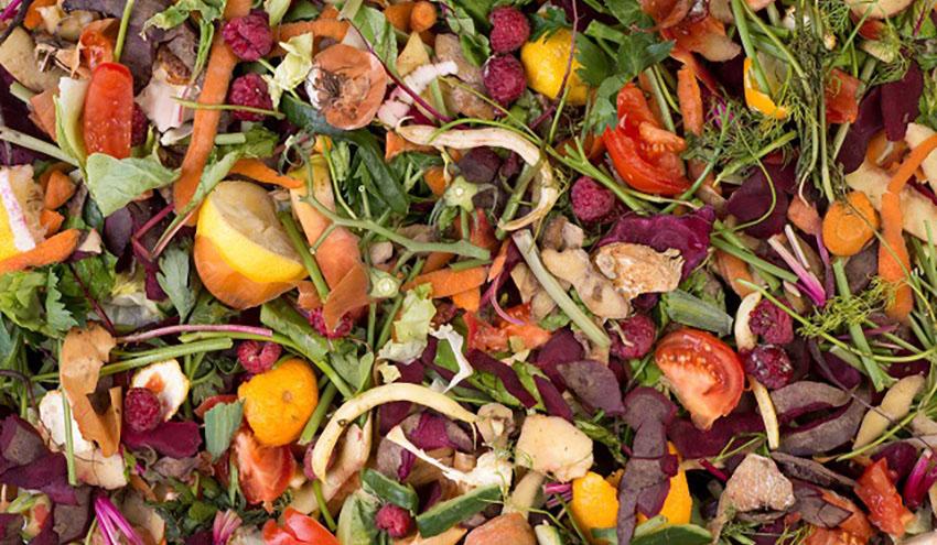 La Xunta ha distribuido más de 17.000 compostadores domésticos para fomentar el reciclaje