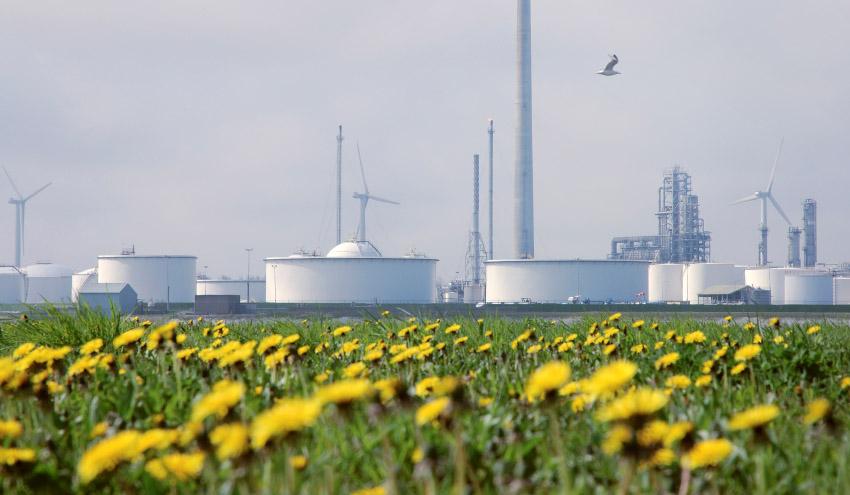 Aprovechando la capacidad química de la naturaleza para una producción industrial más sostenible
