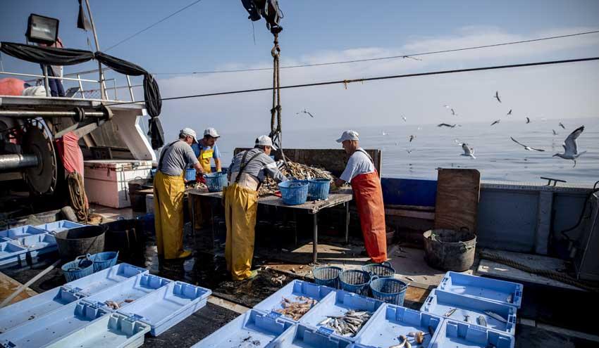 Más de 2.600 pescadores recuperan 152 toneladas de basura marina en 2019 gracias a Upcycling the Oceans