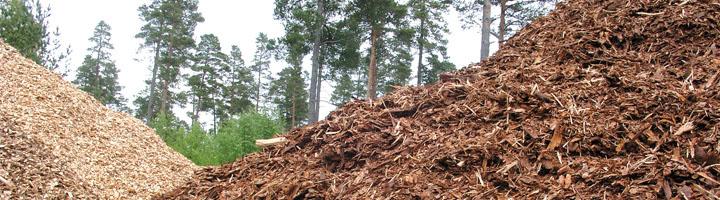 TEN, única empresa gallega seleccionada en los Proyectos Clima con un proyecto sobre uso de biomasa forestal en el tratamiento de RSU