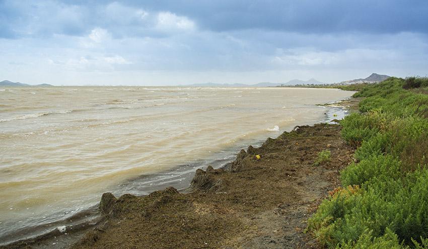 Mar Menor: historia de un colapso ambiental que pudo haberse evitado