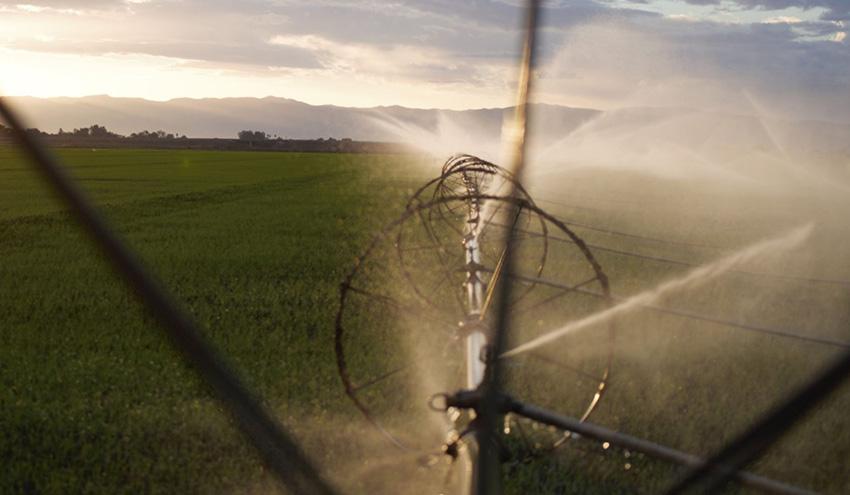 Incatema concluye la segunda fase de un proyecto de Agricultura comercial en Angola
