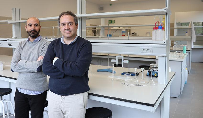 La Universidad Loyola trabaja en un proyecto para transformar gases de efecto invernadero en un azúcar comestible