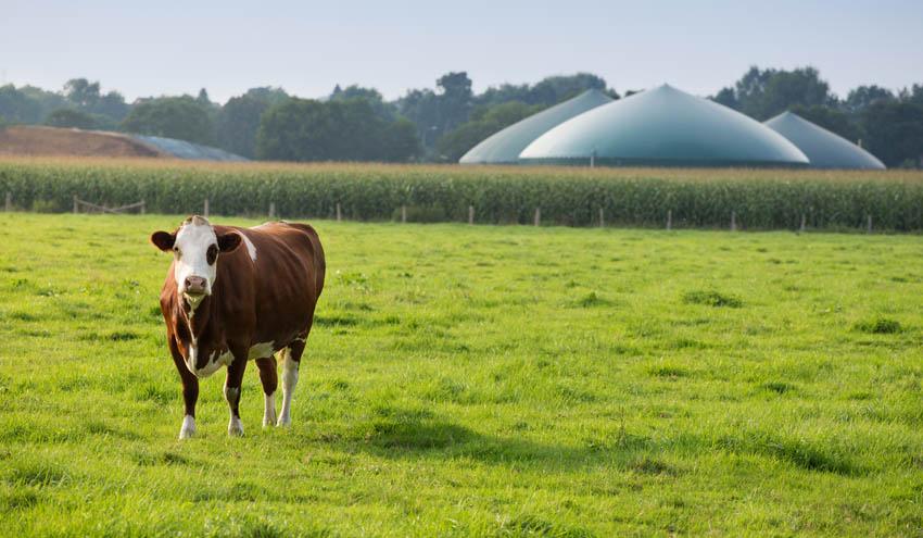 El IRTA consolida su posición en el ámbito del biogás como socios del AEBIG