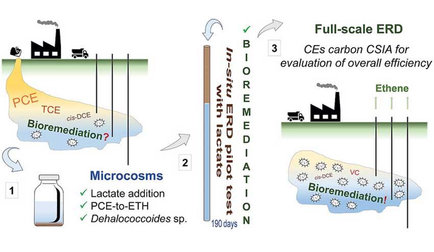 Investigadores de la UAB y de la UB logran descontaminar un acuífero biológicamente