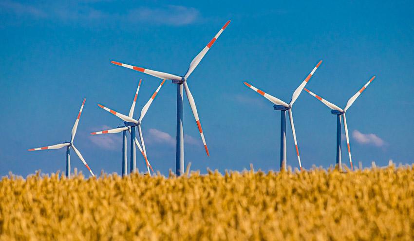 Según la European National Academies of Science, la UE debe basar los planes de recuperación verde en la ciencia