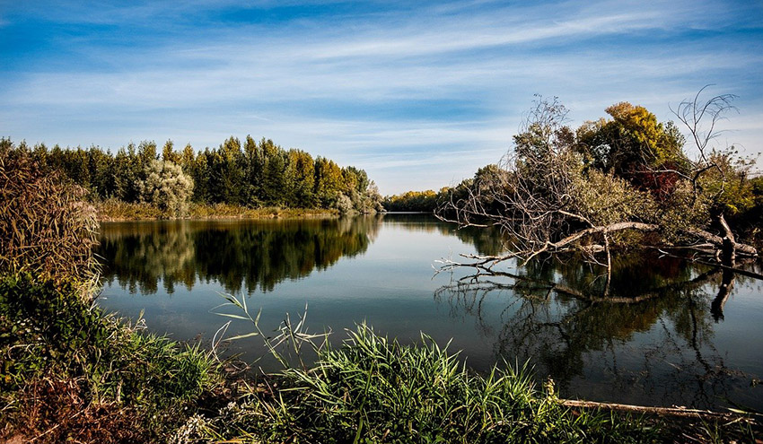 Propuestas para una mejor aplicación de la Directiva sobre responsabilidad medioambiental