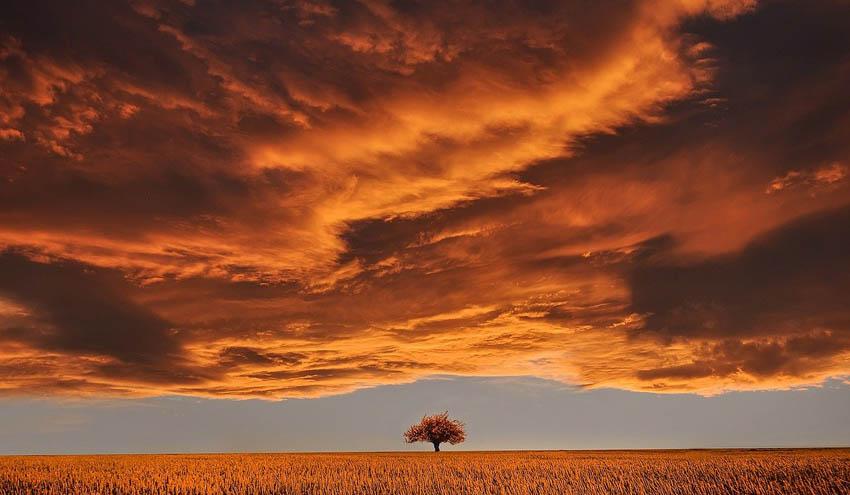 La Junta de Andalucía se adapta a los escenarios locales de cambio climático