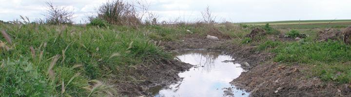 La Junta de Andalucía realizará este año 1.115 inspecciones sobre vertidos industriales y de depuración