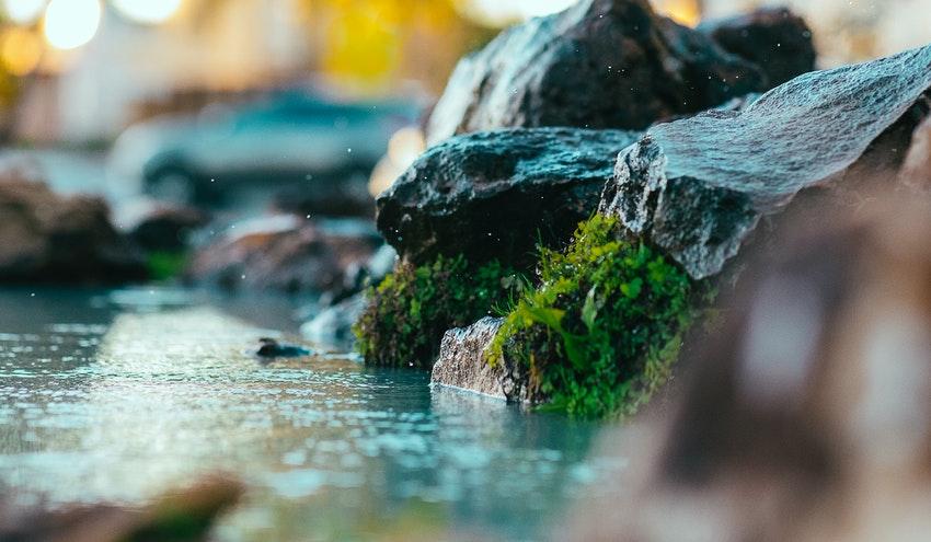 El grito de socorro de los ríos, asfixiados y convertidos en canales de desagüe