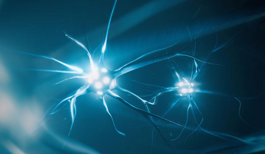 TOMRA presenta en Ecomondo una tecnología revolucionaria de clasificación basada en deep learning