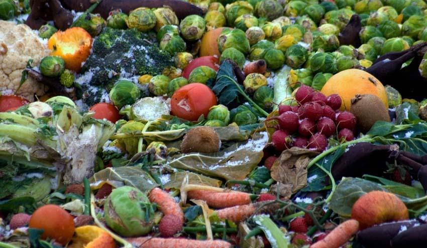 ¿Sabes cuánta agua derrochas con la comida que tiras a la basura?