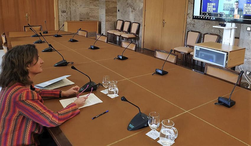 XI Diálogo de Petersberg: la recuperación tras el COVID-19 debe apostar por una economía verde