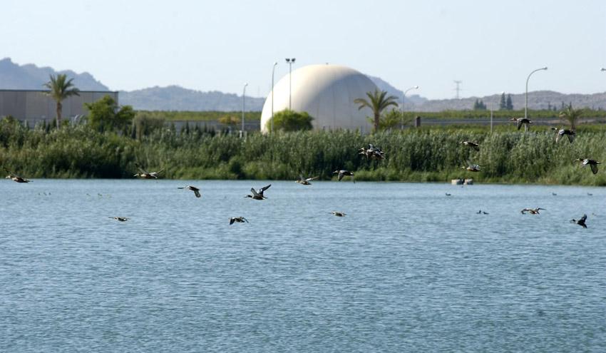 Las depuradoras contribuyen al mantenimiento de los humedales de la Región de Murcia