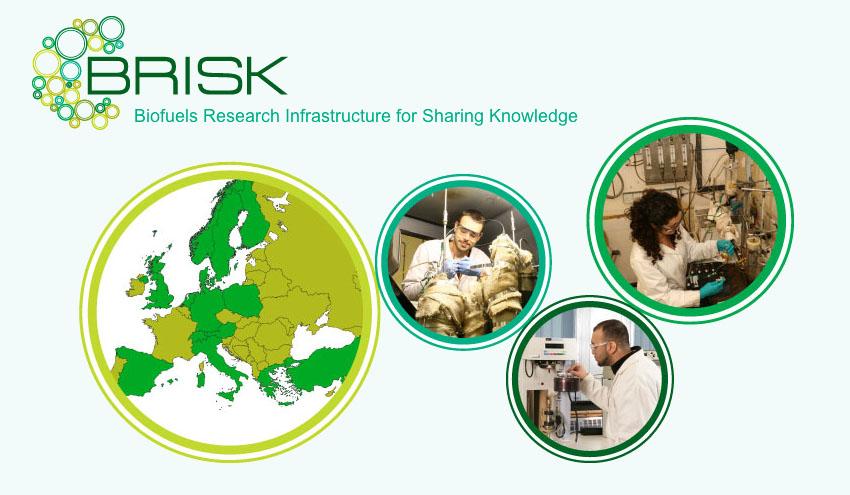 Proyecto BRISK: una red de infraestructuras científicas para impulsar la biomasa europea